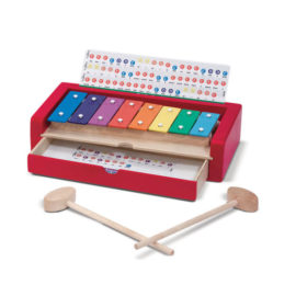 Learn-to-Play Xylophone Music Kids Children Fun Learning