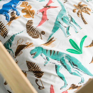 Dinotopia Duvet Set (Single)