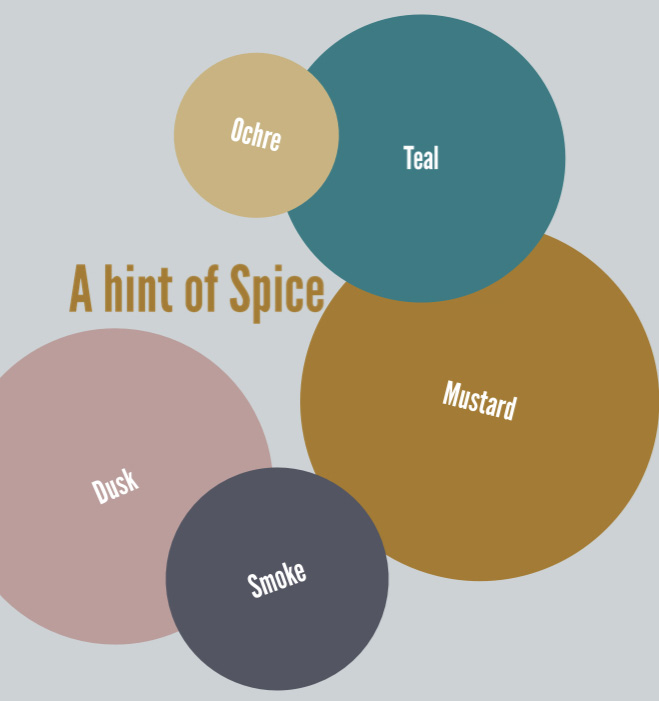 A-hint-of-Spice